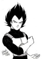 My Vegeta by akumu-kitkat