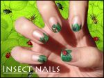 Insect nails by Ninails