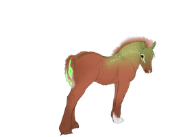Faime Foal Opt 2 by ArsenicLaced-Estate
