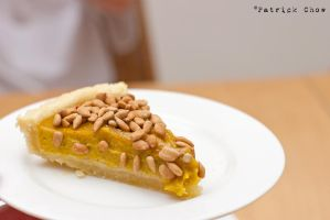 Pumpkin pie 2 by patchow