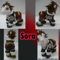 Sora From Kingdom Hearts by AnimeAmy