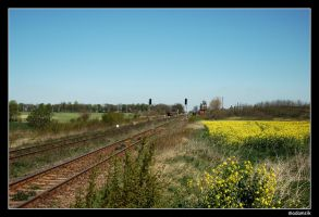 Polish Countryside - Rail I by adamsik
