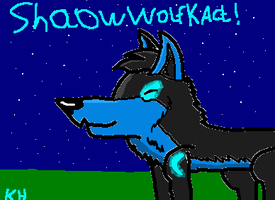for ShadowWolfKACT XD by HungerGamesTribute45