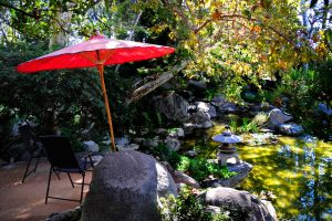 Two Ponds and Red Umbrella by AndySerrano