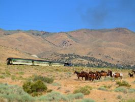 Wild Horses and train 3 by MartinGollery