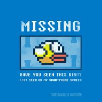 Missing bird by Naolito