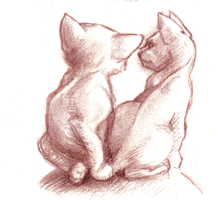 Small Art: sketch of 2 kittens by sethness