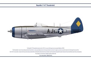 P-47 USAAF 1st FS 1 by WS-Clave