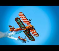 Wing Walkers by q-118