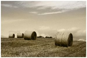 Hay Bails in a line by Free2Fall