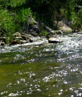 River Flow 2 by OneofakindKnight
