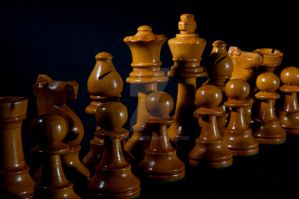 Chess pieces_03 by tanlin