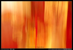 Memory of a Fire by ValerioBulla