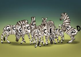Birthday card - Zebras by NadiavanderDonk