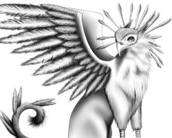 Gryphon by Wunderling