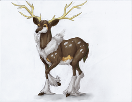December 12th, 2013: Sawsbuck