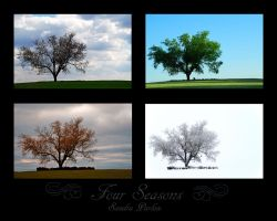 Four Seasons by Handie