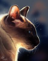 In the Light Speedpaint by Gato-Iberico