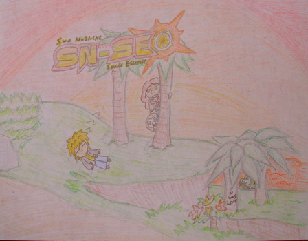SN-SE Cover by AoiSora19S