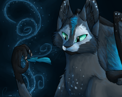 Fragility by Finchwing