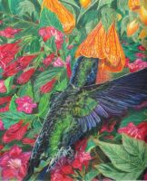 HUMMINGBIRD by rosegirouard
