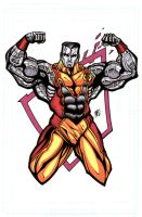 Colossus by bukshot
