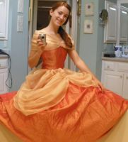 Belle's Ball Gown by Durnesque