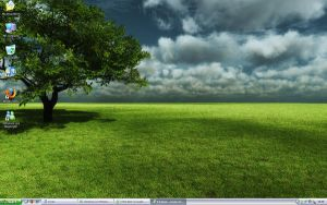 Afternoon Shadow Desktop by Paine45