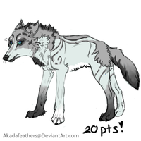 Adoptable: Sold by Akadafeathers