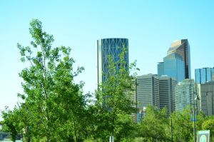 Calgary by YnneiiPhoto