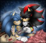 Sonadow - Recovery by BlueNeedle-Inu