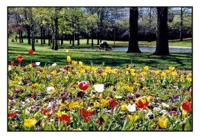 Floriade II by wolfmagus