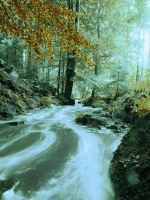 Rivendell 4 by Dragoroth-stock