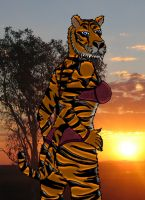 Female tiger anthro by rayman18