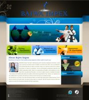 Bajwa Impex Web site by w3soul