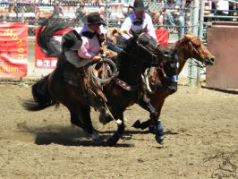 Rowell Ranch Rodeo - 15 by Nyaorestock