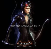 Arkham Knight Catwoman poster by ArkhamNatic