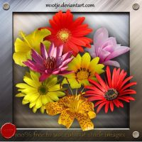 High resolution: Flowers png by M10tje