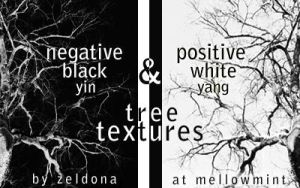 black and white tree textures by mellowmint