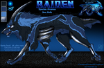 Raiden (Arcanus) Reference 2015 by NinjaKato