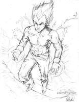 Prince Of Saiyans by Courtney-Crowe