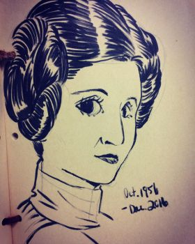 RIP Princess Leia by mosuga