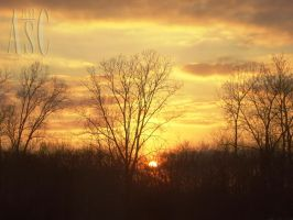 Etched In Gold by Pentacle5