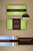 Simple Business Card by WhoIsScott