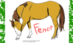 Fenor Sheet by Frostyzzz