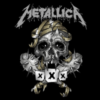Metallica - 30th Anniversary Show's in the Fillmor by soulnex