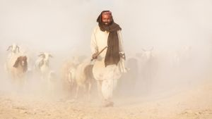 The Good Shepherd by ZaGHaMi