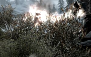 Fire to the Wolf Skyrim by Annatiger1234