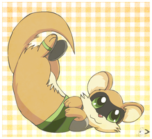Ferret somersault by pichu90