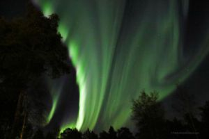 Northern lights filled the sky tonight by Yukihoshi13